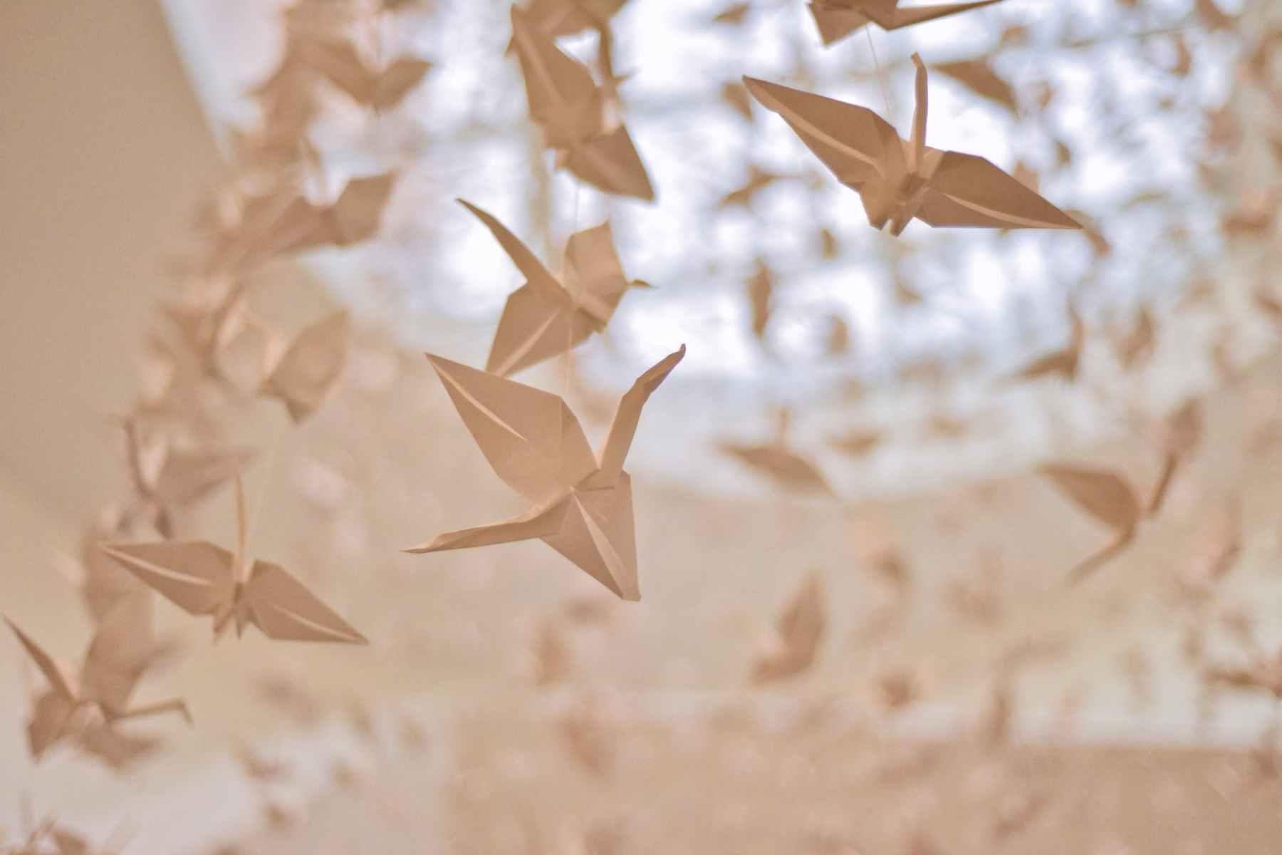 paper cranes
