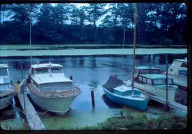 FIDDLE-DEE-DEE in Oak Orchard Creek