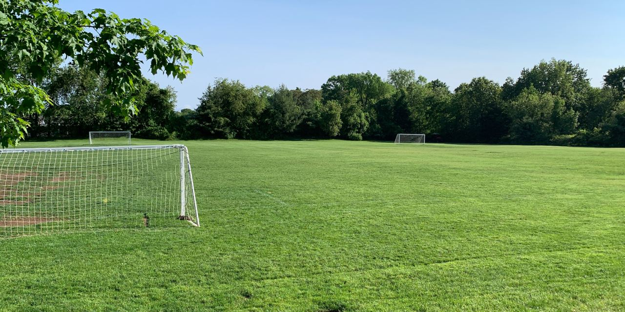 Season update, anticipating next steps and member fees