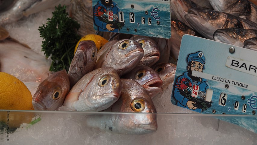 vissen (dorade) markt Lille
