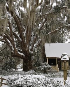 Wimbee Creek Farm House