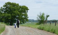 AmishDad1