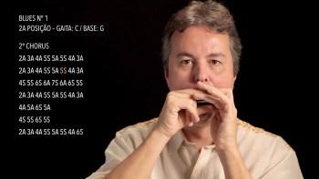 Curso Online de Gaita Diatônica   Toque hoje mesmo, aulas em vídeo