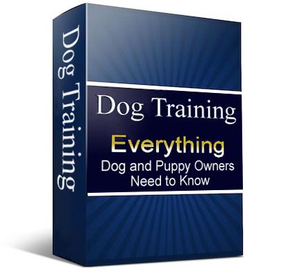 Dog Training Ebook Cover