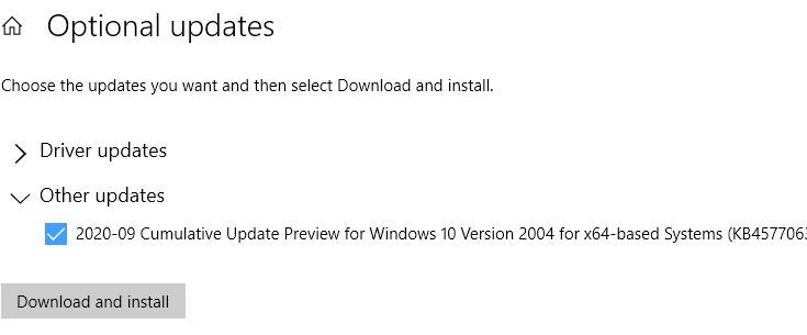 Optional Updates offers KB4577063 which takes 2004 to build 19041.546