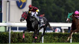 2015香港カップはエイシンヒカリとヌーヴォレコルトの日本馬ワンツー!香港マイルはモーリスが世界も圧倒!なんて日だ!!