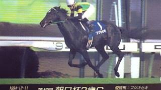 """【追悼企画】""""幻の三冠馬""""フジキセキ、頸椎損傷のため23歳で死亡を惜しむ"""