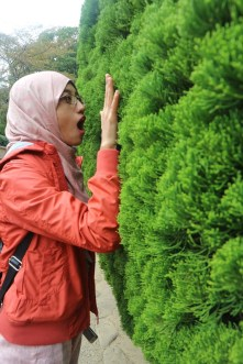 Kak Difa even felt really surprised. Probably the first time she saw such tree. :p