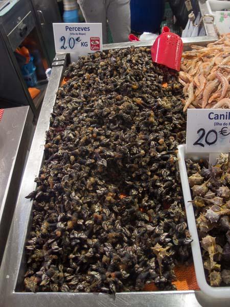 Markt in Loule: Perceves, eine echte Delikatesse, die es nur am Atlantik gibt