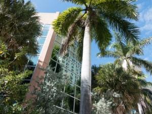 Fluchten und Spiegelungen in Fort Lauderdale