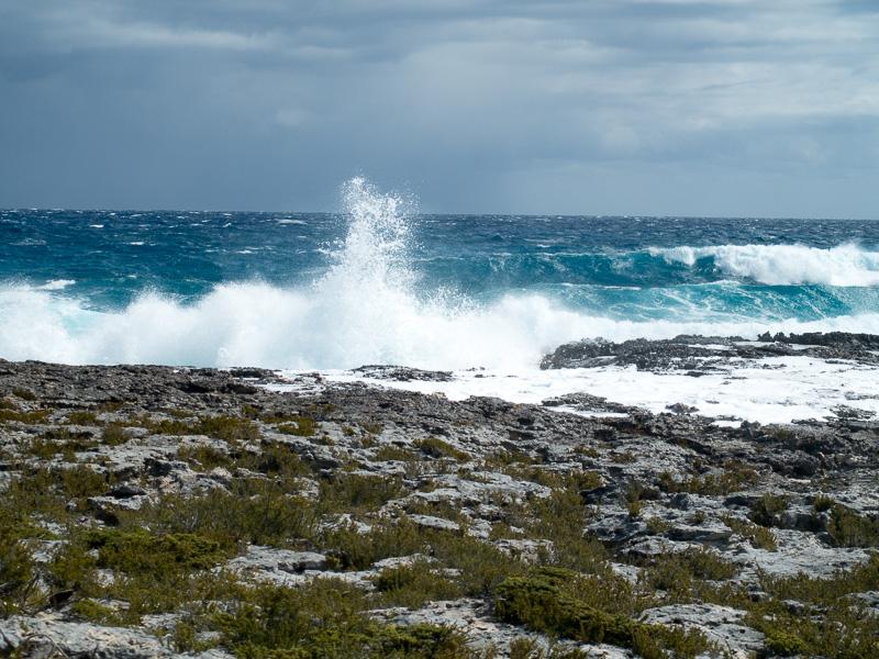 Mitselgen Bahamas: der wilde Atlantik