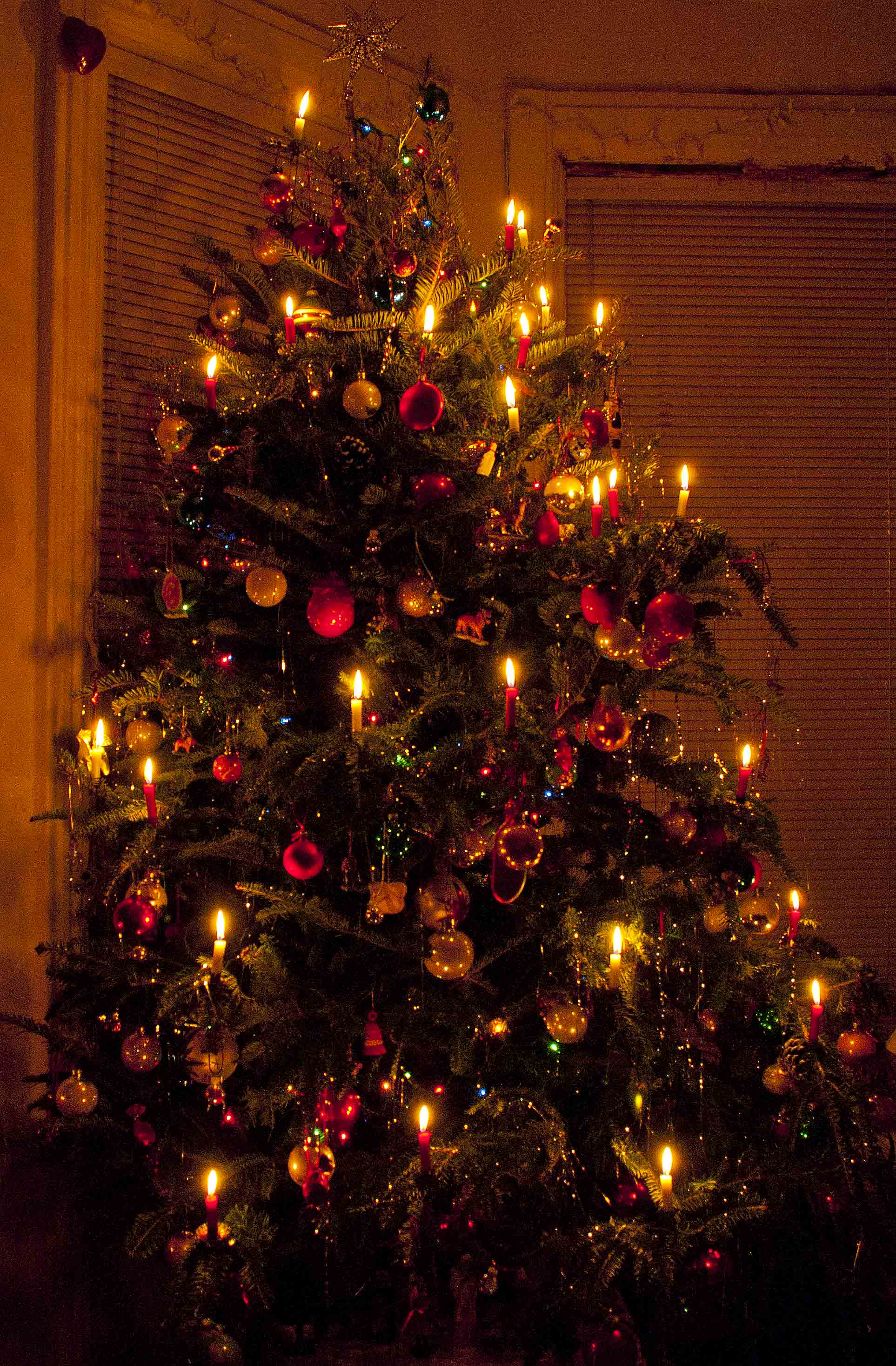 Christmas Tree Candles Wind Against Current