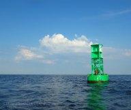 Green buoys provide color relief