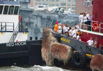 """""""Red Hook"""" versus """"Resolute"""""""