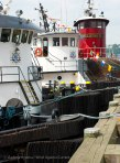 The tugs tie up