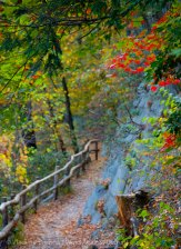 Mohonk Fall colors 12