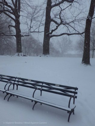 Park benches under snow