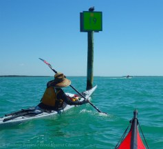 We paddle down the Intracoastal Waterway