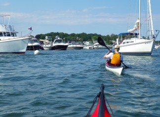 Day 2: We paddle leisurely up the Annisquam River