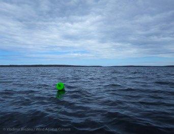 6. Everywhere, lobster buoys