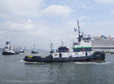 Tugboat Race 2014 36