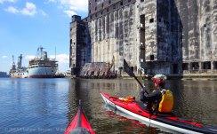 Gowanus Canal 2015 11
