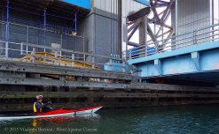 Gowanus Canal 2015 25