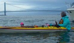 Yellow Submarine Paddle 40
