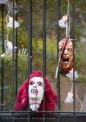 Halloween decorations 2015 3
