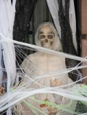 Halloween decorations 2015 38