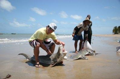 Myself with a Juvenal Tiger Shark