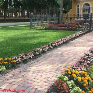 Beautifully landscaped neighborhood yard (credit: Windermere Sun-Susan Sun Nunamaker)