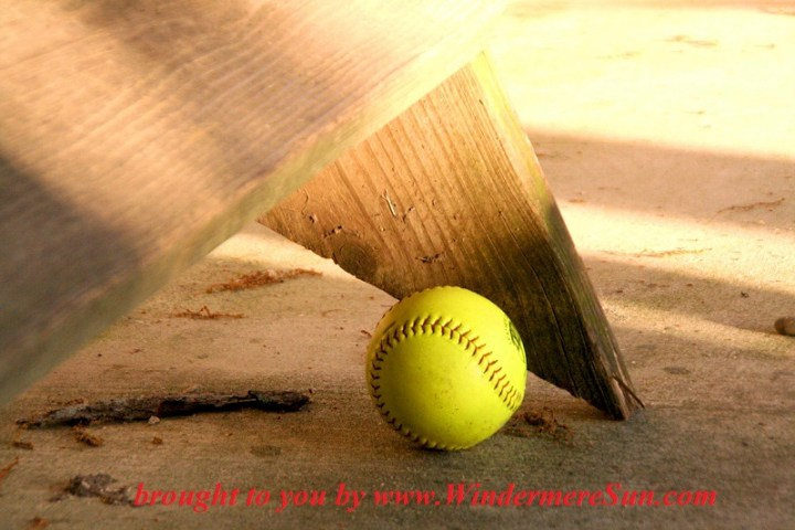 baseball-1-1414904, freeimages, credit-Taryn Kaiser final