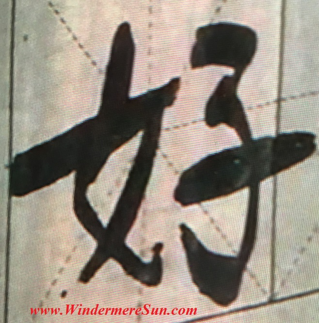 """Chinese character """"how"""", meaning good, in multiple strokes (credit: Windermere Sun-Susan Sun Nunamaker)"""