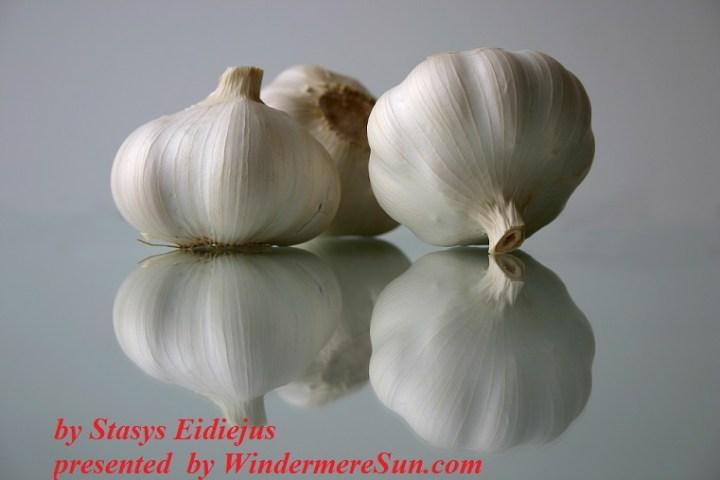 Garlics by Stasys Eidiejus