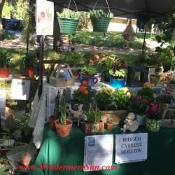 Hidden Cypress Hollow (credit: Windermere Sun-Susan Sun Nunamaker)