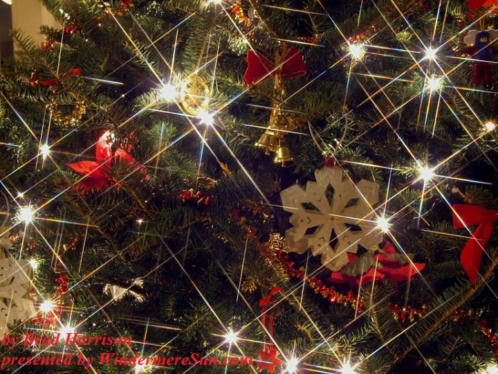 definitely-sparkly-1170343-freeimages-by-brad-harrison-final