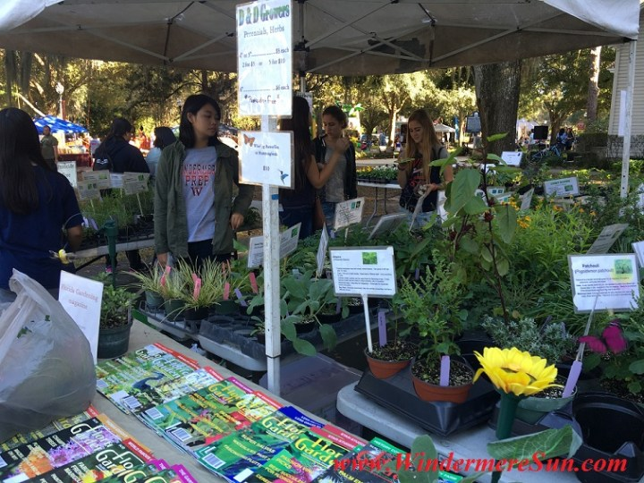 Beautiful Plants and magazines of D & D Growers at Windermere Treebute (credit: Windermere Sun-Susan Sun Nunamaker)
