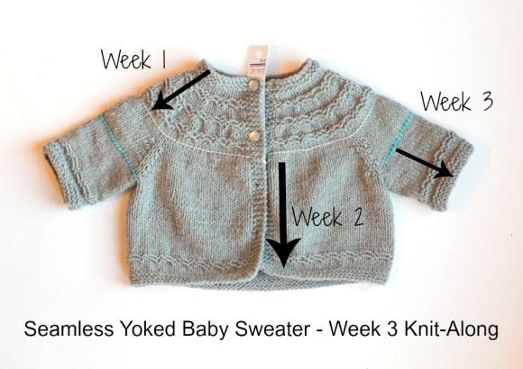 Seamless Yoked Baby Sweater Knit-along Week 3