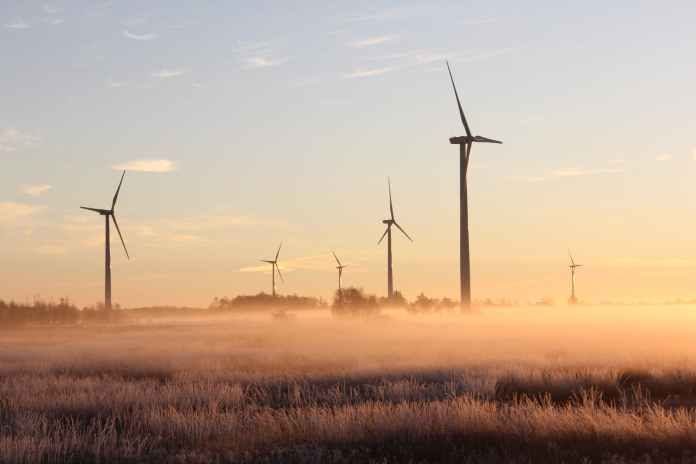 photo of windmills during dawn