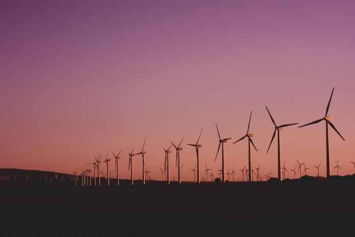 photo of wind turbines lot