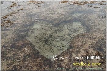 旅遊∥ 小琉球 - 啟程、漁埕民宿、潮間帶。
