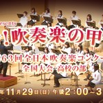 吹奏楽コンクール全国大会TV放送日時 響け!吹奏楽の甲子園