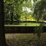 Friedhof im Wald