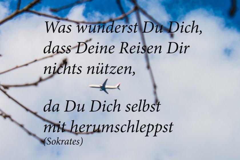 Sokrates Zitat