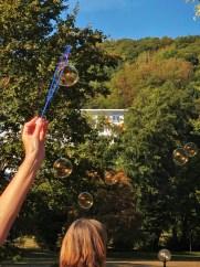 Seifenblasen fliegen vor einem Wald durch die Luft