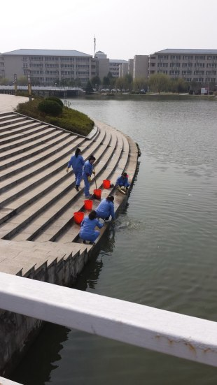 Anhui Normal University's newest campus contains an impressive library as well as many classroom and administrative buildings and dormitories. This photo shows custodians from the library rinsing out their mops in the reflective pool that surrounds the library, which was a gift from a wealthy donor to the university.