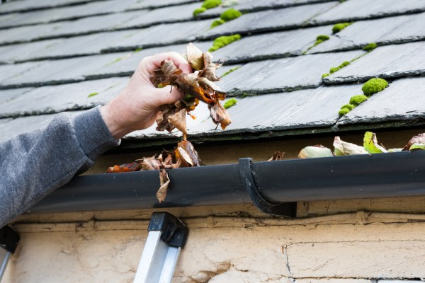 Gutter Cleaning Wylie TX