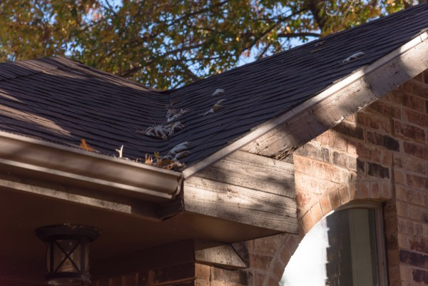 Gutter Cleaning McKinney TX
