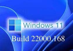 Windows 11 new update